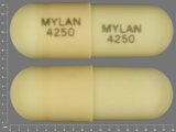 MYLAN;4250. Doxepin Hydrochloride 50 MG Oral Capsule. Ingredients: Doxepin